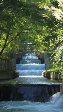 烏川の上水とススキ Footage