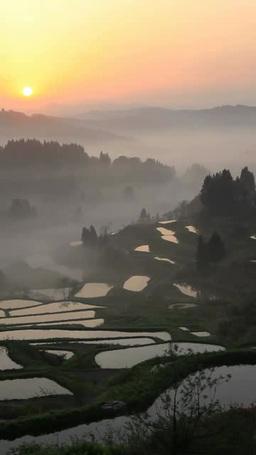 星峠の棚田と朝霧と朝日 ภาพวิดีโอ