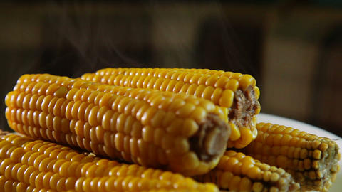 Fresh Boiled Corn On A Plate Close Up 2 stock footage