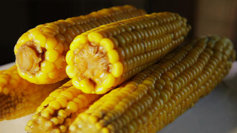 Fresh Boiled Corn On A Plate Close Up 3 stock footage