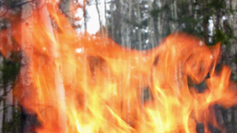 Fire 4 Stock Video Footage