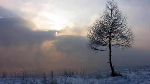 Winter landscape 1 Stock Video Footage