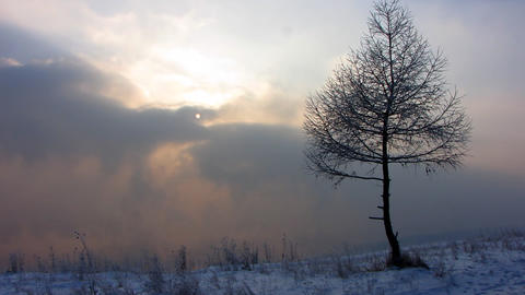 Winter landscape 1 Stock Video Footage