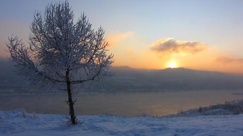 Winter landscape 4 Stock Video Footage