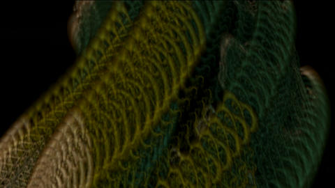 python,metal... Stock Video Footage