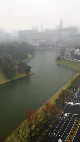 吹雪の桜田堀と皇居と霞ヶ関方向のビル群と内堀通り Footage