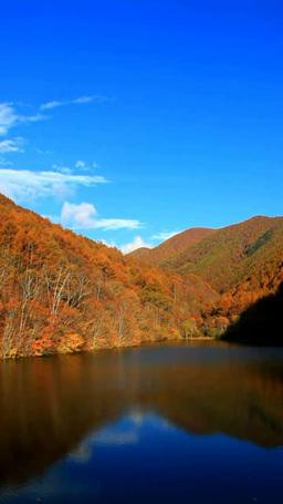 朝の竜ヶ沢湖と紅葉の樹林と流れる雲と渋田見西峰,微速度 Footage