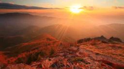 Alpine plants, autumn larch trees, sunset, and Hodaka mountain range Footage