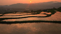 Obasute rice terrace just after rice planting, and morning sun Footage