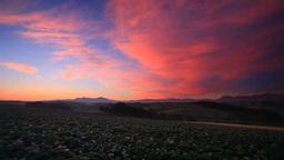 Blooming potato fields, Tokachi mountain range, Mount Taisetsuzan and morning gl Footage