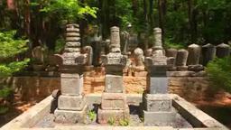 真田信綱の墓と北の墓と真田昌輝の墓 Footage