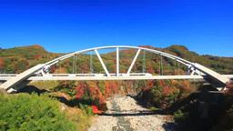 長野原めがね橋から望む第三吾妻川橋梁と特急草津と紅葉 Footage
