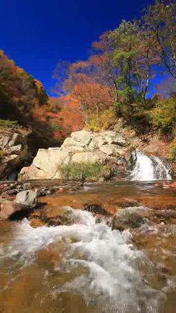紅葉の千古の滝 影片素材