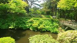 見晴公園の木橋と池と東屋 Footage