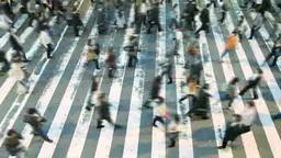 横断歩道を行き交う人々 Footage
