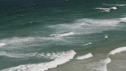 浜の波 Footage