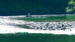 仁淀川の釣り船 Footage