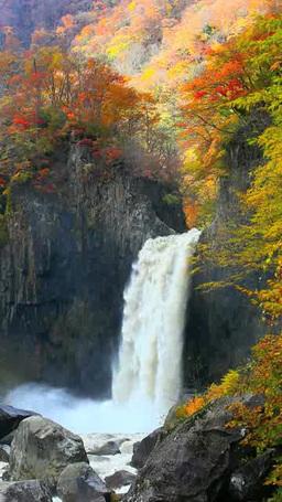 秋の苗名滝 影片素材