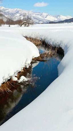 冬の姫川源流自然探勝園 영상물