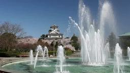 長浜城と噴水 Footage