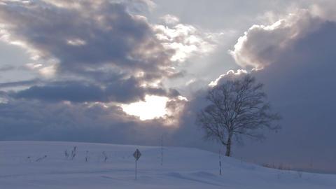 Snowfield in Biei,Sunset time,Hokkaido,Japan Stock Video Footage