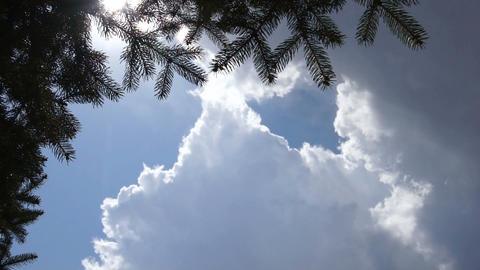 Clouds 1