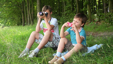 Boys in forest this photo 4 Stock Video Footage