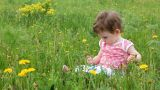 Baby with dandelions on green spring lawn Footage