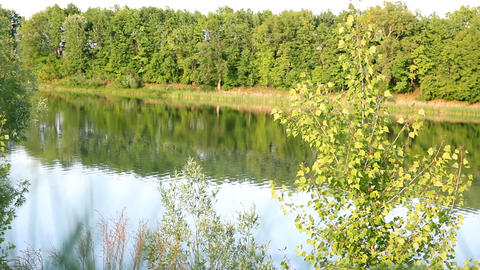 spring lake landscape Stock Video Footage