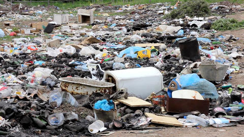 garbage in landfill Stock Video Footage