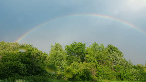 Rainbow over forest Stock Video Footage