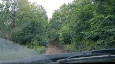 Riding on forest road Stock Video Footage