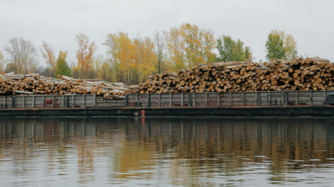 ship loaded with wood on the river Stock Video Footage