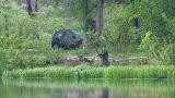 fishing men on lake at rain Footage