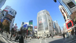 Shibuya scramble crossing Footage