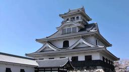 Nagahama Castle Footage