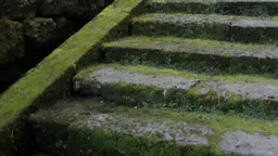 Mossy stone steps Footage