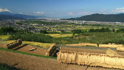 Obasute rice paddies Footage