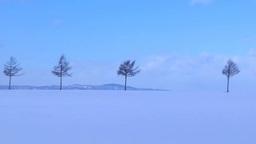 Winter fairytale Hill Footage