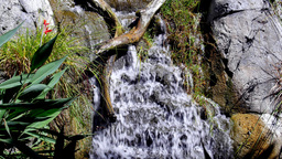 Small waterfall flowing into a stream Footage