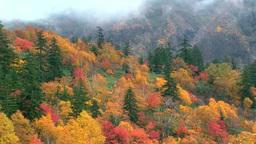 The fall colors at Mount Tokachidake onsen hot spring Footage