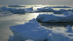 Ice floes in the morning Footage