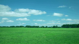 Meadow And Floating Clouds stock footage