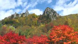 Sounkyo autumn leaves Footage