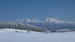 霧氷のカラマツと大雪山 Footage
