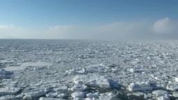 オホーツク海の流氷原 Footage