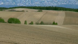 春の丘の畑と十勝岳連峰 Stock Video Footage