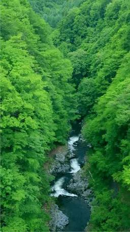 Nakatsu River valley Footage