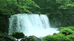 奥入瀬の銚子大滝 Stock Video Footage