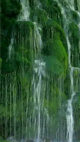 夏の元滝 Stock Video Footage